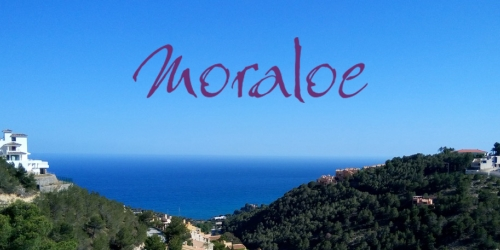 Moraloe Launches New Website!